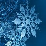 Christmas snowflakes on spruce twig — Stock Photo #7444524