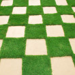 Grass tile - Stock Photo
