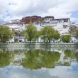 Potala — Stock Photo #12077146