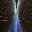 Stock Photo: Abstract bridge in putrajaya