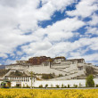 Potala palace — Stock Photo #12088782