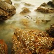 Long exposure of rocks on sea — Stock Photo