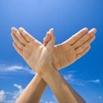 Hand symbolizing dove sign — Stock Photo