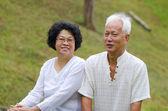 Couple de personnes âgées asiatique au parc en plein air — Photo