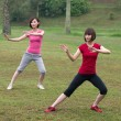 Asian girls tai chi outdoor , chinese women — Stock Photo #18069167