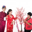 Chinese new year family — Stock Photo #18296449