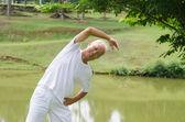 Asiático entrenamiento senior masculino en el parque — Foto de Stock