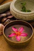 Tropical spa setup with traditional frangipani flower and massag — Stock Photo