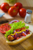 Hot dog fast food with plenty of raw ingredients on the backgrou — Stock Photo