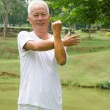 Retired Asichinese senior mexercising in park — Stock Photo #24866351
