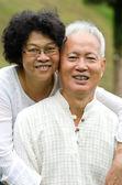 幸福的亚洲高级情侣拥抱彼此 — 图库照片