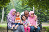 Happy Malay Asian Family enjoying family time together in the pa — Stock Photo