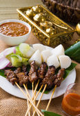 Satay a traditional malaysian indonesian roasted meat skewer — Stock Photo