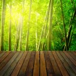 Bamboo forest with ray of lights and plank woods, suitable for p — Stock Photo #27442725