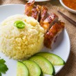 Chicken rice, singapore malaysian food with materials as backgro — Stock Photo