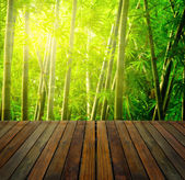 Bamboo forest with ray of lights and plank woods, suitable for p — Stock Photo