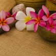 Tropical spa setup with traditional frangipani flower and massag — Stock Photo