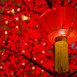 detail of chinese new year laterns hanging on tress — Stock Photo
