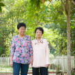 Stock Photo: Asisenior females walking in park