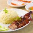 Roast duck with rice with chilli — Stock Photo