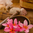 Balinese Spa setting.  — Foto Stock