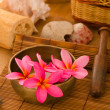 Pink frangipani with pebbles on woven bamboo mat — Stock Photo