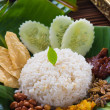 Traditional malay curry paste rice — Stock Photo