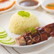 Roasted duck, Chinese style, served with steamed rice on dining — Stock Photo #35835191