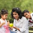 Indian family outdoor eating healthy photo — Stock Photo