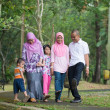 Malay family having fun in the park ,malaysian people — Stock Photo #38375133
