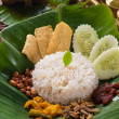 Nasi lemak — Stock Photo #40963415