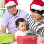 Celebrating Christmas — Stock Photo #47533577