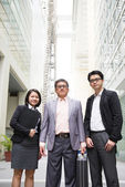 Singaporean business team — Stock Photo