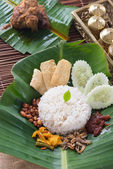 Traditional malay curry paste, rice — Stock Photo