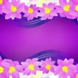 Pink flowers border on dark magenta background - Stock Photo