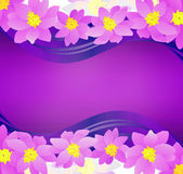 Pink flowers border on dark magenta background — Stock Photo
