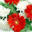 White and red flowers with green decor photo — Stock Photo