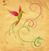 Colibri bird and flourishes grange background — Stock Photo