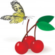 Cherries with butterfly — Stock Vector