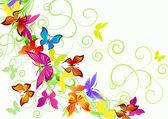 Farklı kelebekler — Stok Vektör