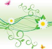 Daisy kurvor med färg fjärilar — Stockvektor