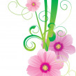 Green vector spring illustration with pink cosmos flower - Image vectorielle