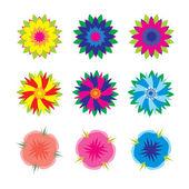 Different vector flowers set — Stock Vector