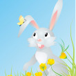 Bunny in yellow flowers with butterfly — Stock Vector