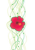 Hibiscus illustration — Stock Vector
