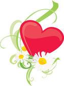 Corazón con chamomiles — Vector de stock