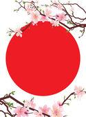 Japan sakura tree blossoming brunches and japan symbol red sun — Stock Vector