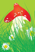 Red mushroom with grass and daisies — Stock Vector