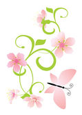 Pink flowers curves — Stock Vector