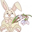 Stock Vector: Easter bunny vector ilustration